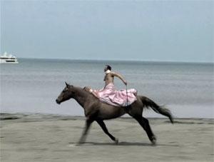 my_dark_horse
