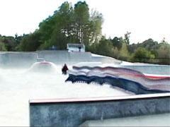 skaterpede
